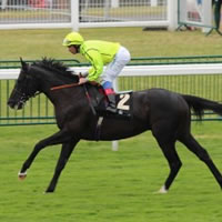 Dandino on track for June return