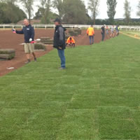 New turf being laid at Ballarat racecourse