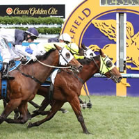 Firehouse Rock on Derby trail following thrilling Caulfield victory