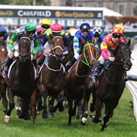 caulfield-racing