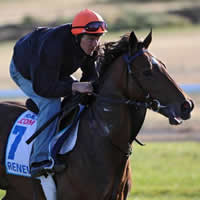 Ballarat Trainer to saddle up first Group 1 runner in 2014 Caulfield Cup