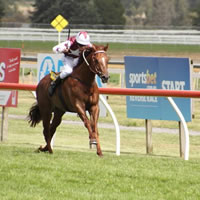 238 nominations for 2014 Sportsbet.com.au Ballarat Cup Day