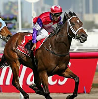 emirates-stakes-hucklebuck