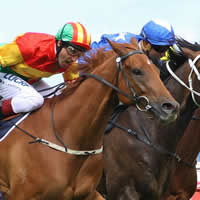 Magic Millions Adelaide Yearlings fire on Derby Day