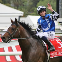 melbourne-cup-protectionist