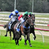 seymour-races