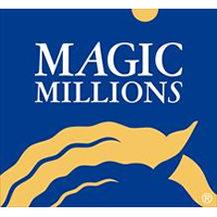 Magic Millions National Yearling Sale Catalogue now online