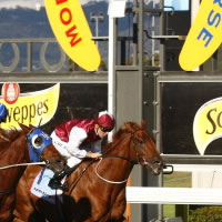 Prizemoney increase announced for Magic Millions Adelaide Classic