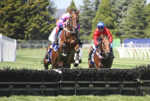 ballarat-jumps-racing