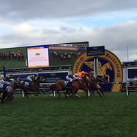 Boban makes it a memorable Memsie Stakes Day at Caulfield