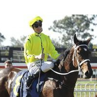 Rockolicious and Blake Shinn make it two from two at Warwick Farm