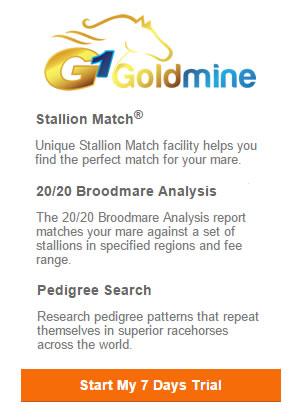 G1 Goldmine