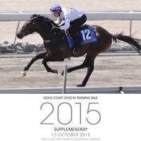 mm-2yo-yearling-sale